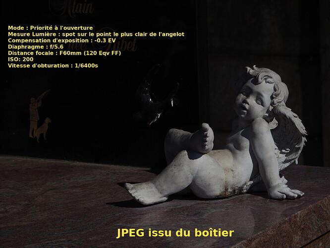Angelot_2_JPEG_Boitier